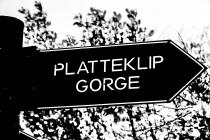 platgorge_03